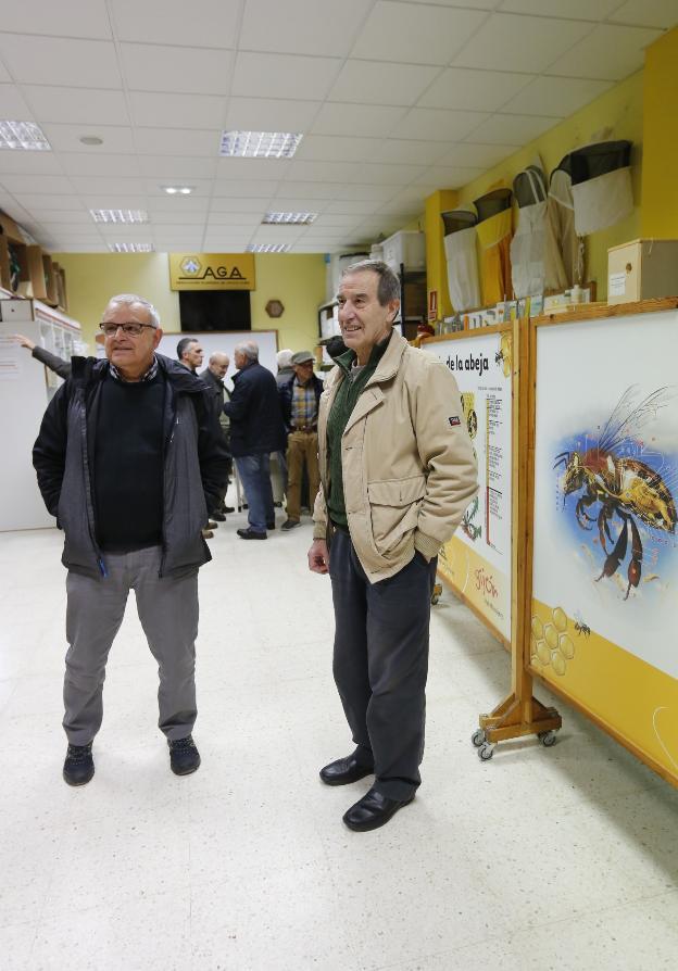 Juan Buelga y José Manuel Alonso, en la sede de la Asociación Gijonesa de Apicultura. / PALOMA UCHA
