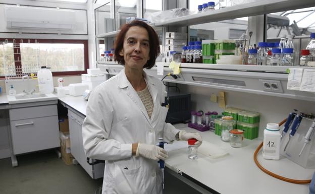 Susana Delgado es investigadora Ramón y Cajal en el IPLA. / D. ARIENZA