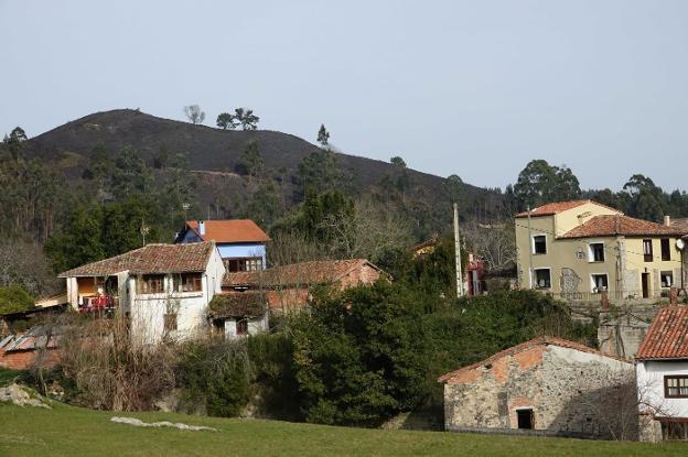 Monte quemado cercano a las viviendas llaniscas. /  NEL ACEBAL